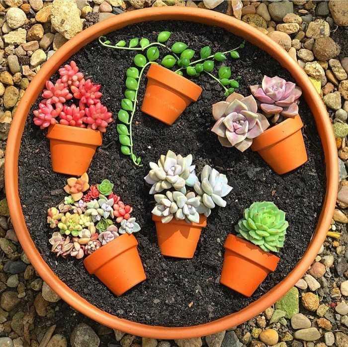 terrarium with vases