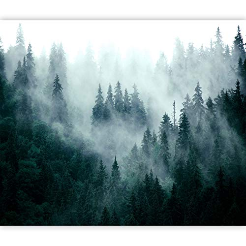 murando Forest Fog Wall Murals 350x256 cm XXL Non-woven Wallpaper Woven Decorative Wall Decor Modern Murals Photographic Design Nature Scandic Landscape cB-0533-ad