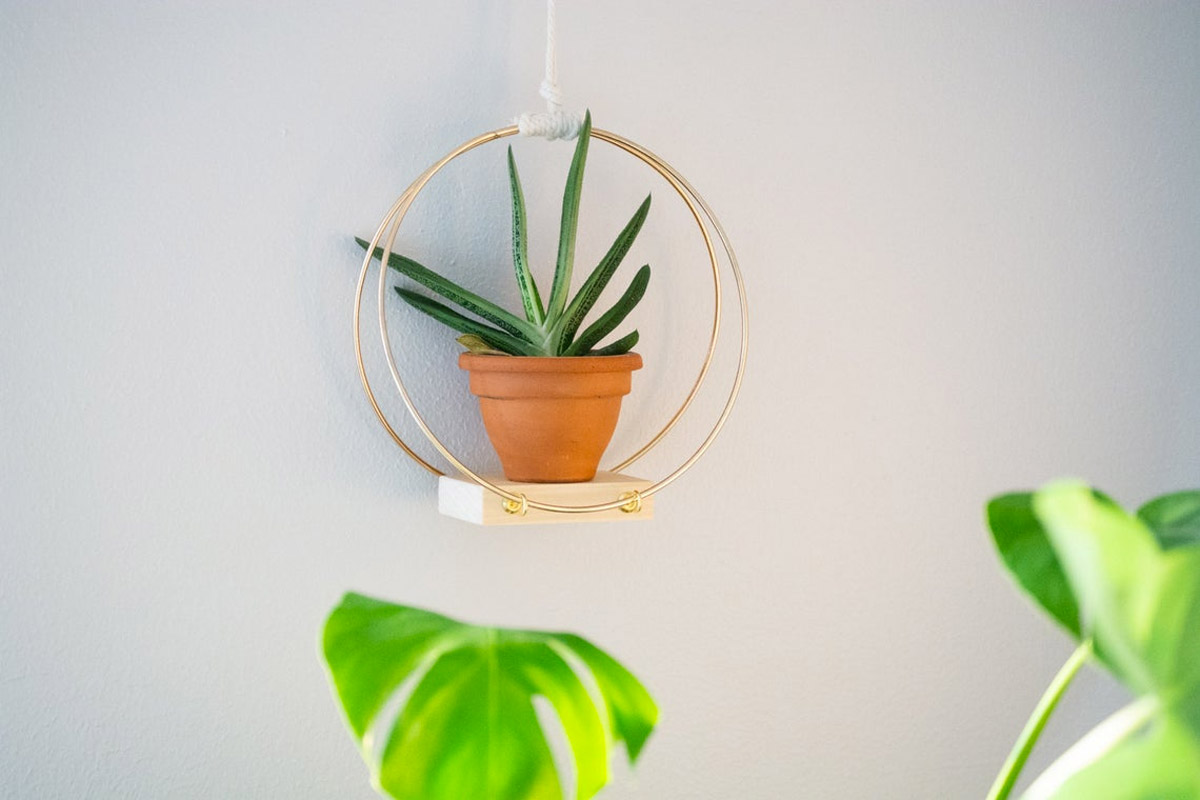 creative ideas for decorating the walls of the house with plants